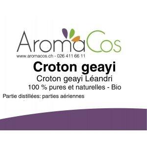 Croton geayi BIO