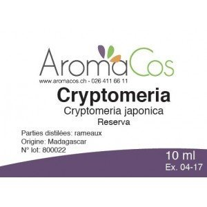 Cryptomeria
