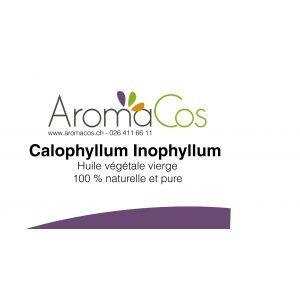Calophylle inophyle (Tamanu) BIO