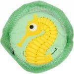 Bob enfant - Hippocampe - Coq en Pâte