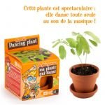 Kit terre cuite 8 cm Explore nature Plante qui danse - Radis et Capucine