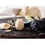 Pinus Cembra Fragrance Globe - Natures Design
