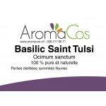 Basilic Saint Tulsi