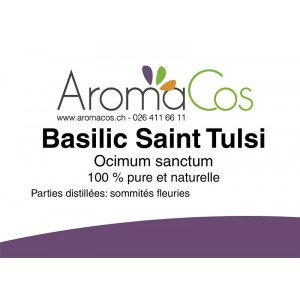 Basilic Saint Tulsi Bio