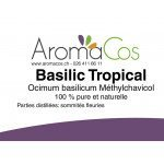 Basilic Tropical