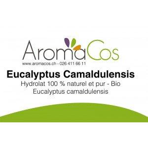 Eucalyptus camaldulensis BIO