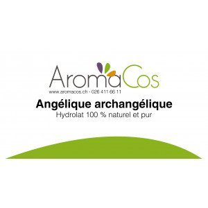 Angélique archangélique Bio