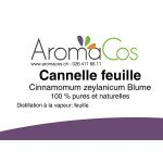 Cannelle feuille Bio