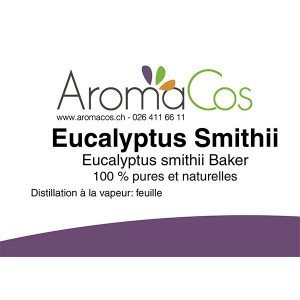 Eucalyptus Smithi Bio