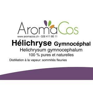 Hélichryse de Madagascar Bio ( Gymnocéphale )